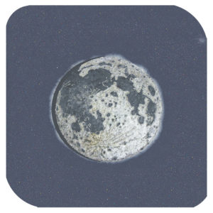 La luna di Caterina Magri